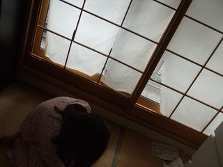2016-02-07hakai 006.JPG