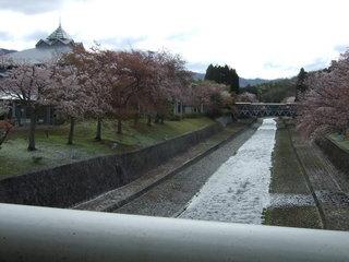 2016-04-08kokyuki 002.JPG