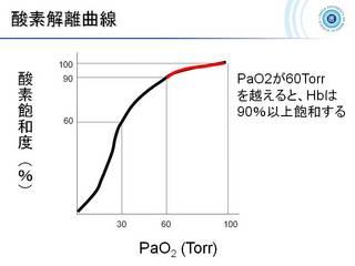 35酸素解離曲線.jpg