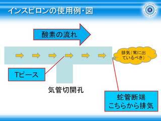 6インスピロンの使用例・図.jpg
