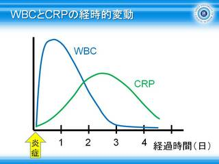 7WBCとCRPの経時的変動.jpg