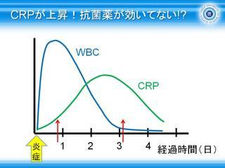8CRPが上昇抗菌薬が効いてない.jpg