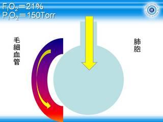 A-aDO2スライド2.JPG
