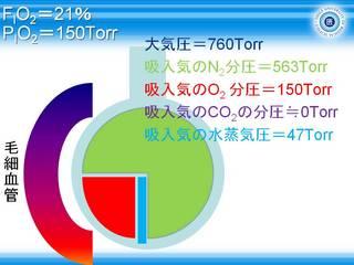 A-aDO2スライド4.JPG