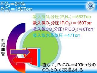 A-aDO2スライド5.JPG