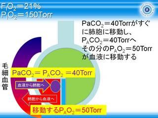 A-aDO2スライド6.JPG