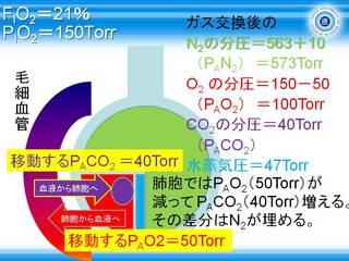 A-aDO2スライド7.JPG
