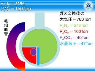 A-aDO2スライド8.JPG