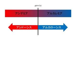 スライド14.JPG
