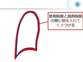 スライド52.JPG