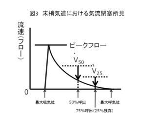 図3 末梢気道における気流閉塞所見.JPG