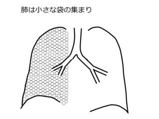 図スライド1.jpg
