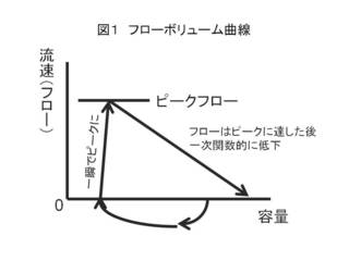 図1 フローボリューム曲線.JPG