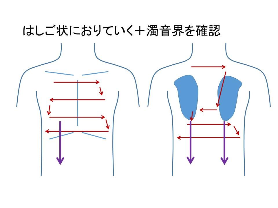 呼吸器疾患診断手順ガイド239・...