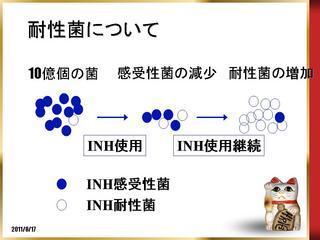 耐性菌機序.jpg