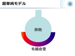 血ガス呼吸管理図スライド12.jpg