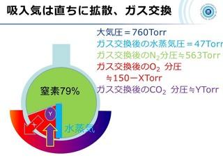 血ガス呼吸管理図スライド19.jpg
