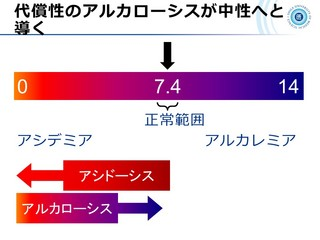 血ガス呼吸管理図スライド5.JPG