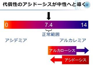 血ガス呼吸管理図スライド7.JPG