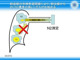 12肺底部の末梢気道閉塞により、肺尖部からの(N2濃度の高い)ガスが出始める.JPG