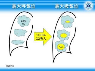 5容量変化の大きな肺底部に多くのO2が流入.JPG